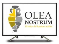 aa_oleanostrum2
